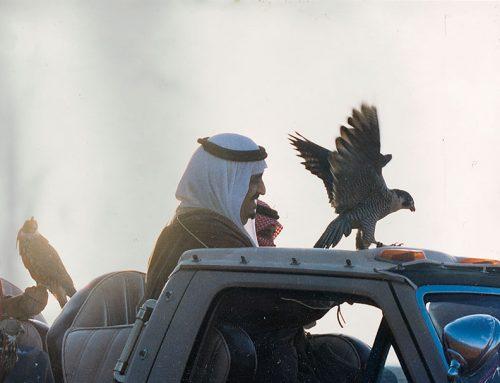 فهد بن عبد العزيز الملك الأنسان